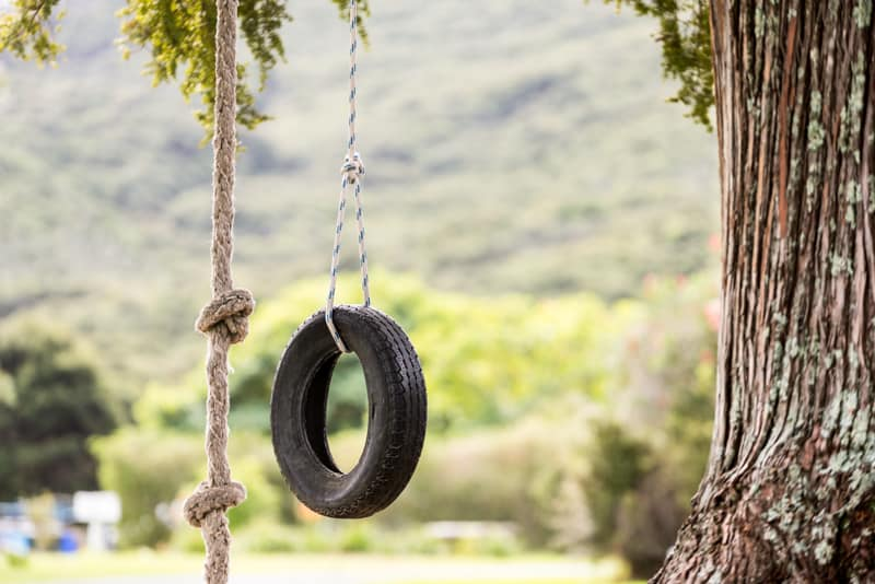 Tyre Swing Russell Orongo Bay Holiday Park