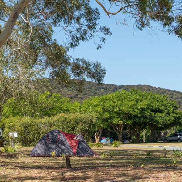 Camping, caravan and campervan sites Russell Orongo Bay Holiday Park